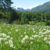 Peace In The Valley Karaoke Gospel Singer